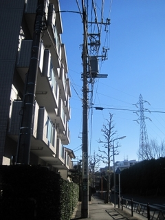 espowallshirakawa03_2.jpg
